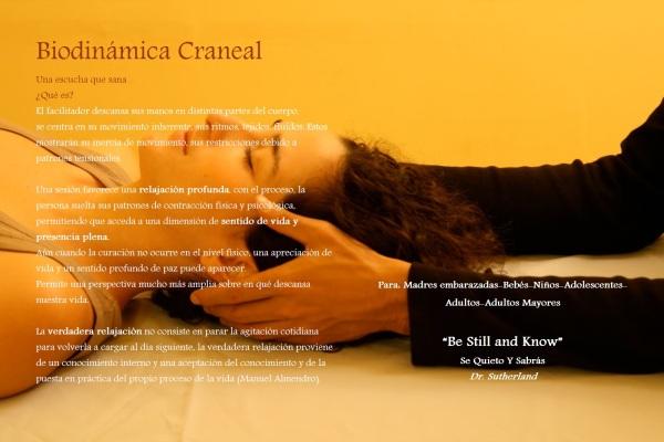 biodinamica craneal2