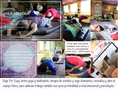 cartel yin yoga