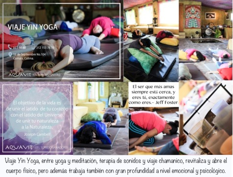 cartel yin yoga